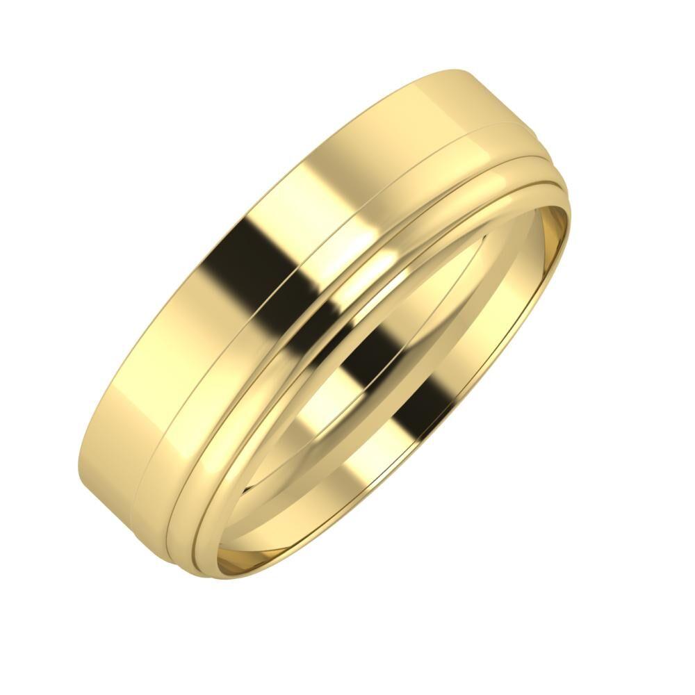 Adela - Aina 6mm 14 karátos sárga arany karikagyűrű
